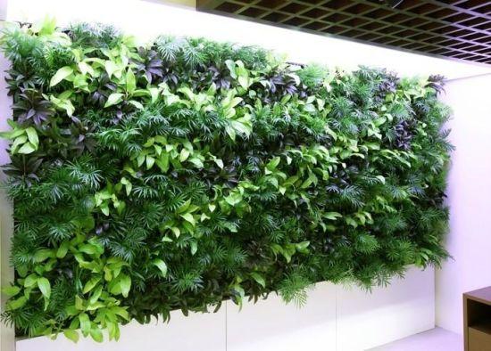 Tường cây giả quán cà phê